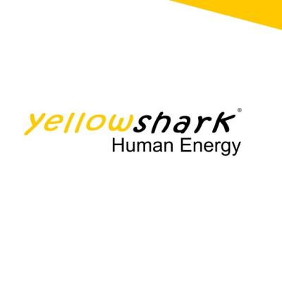 Administration intern – yellowshark AG