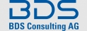 BDS Consulting AG